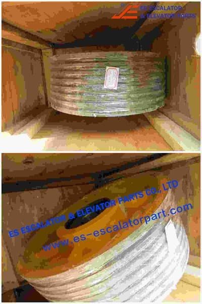 Rope Pulley Assy 200163379
